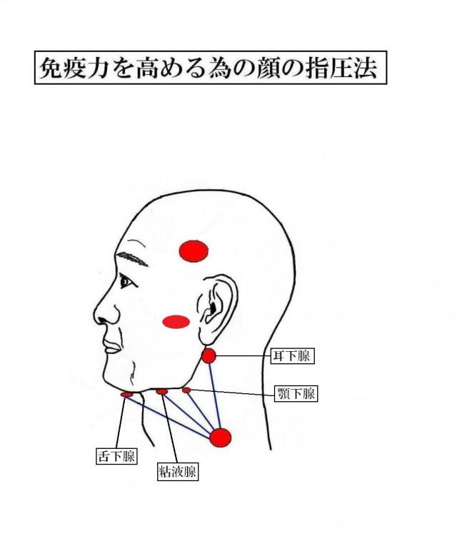 天城流 免疫力を高める為の顔の指圧法