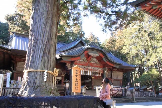 北口本宮富士浅間神社⛩