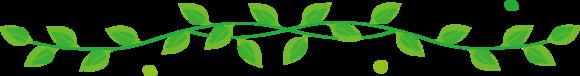 国分寺の整体【 口コミNo.1 】のぶ整体院の葉