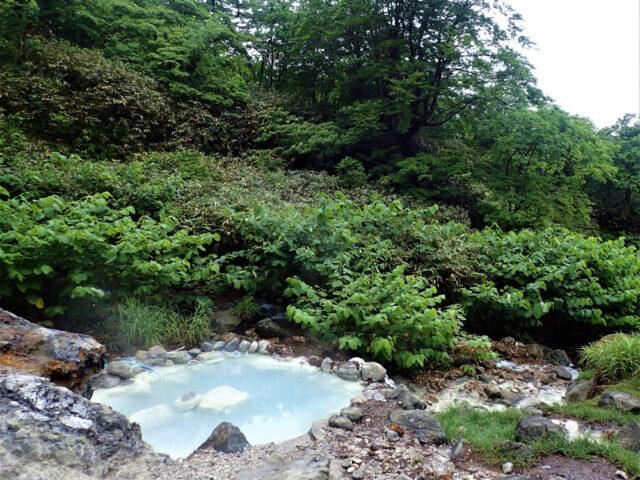 一本松野天風呂♨